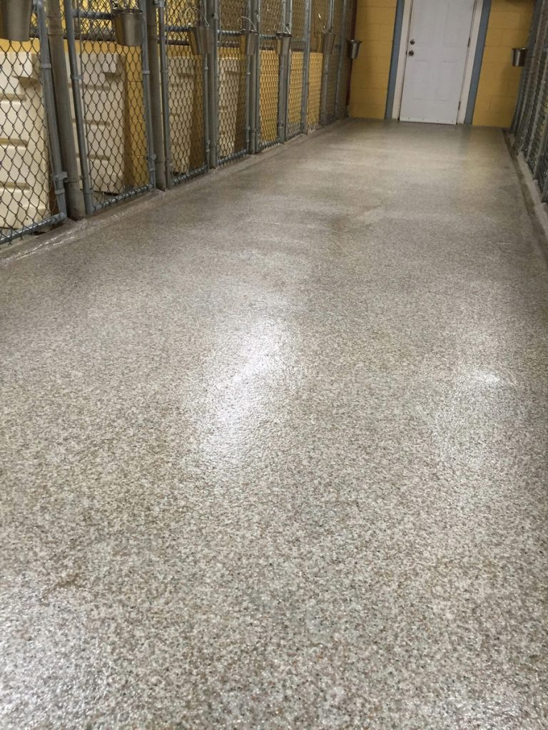 vet surgery and kennel flooring